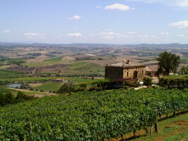 Il Marroneto, Montalcino, Siena