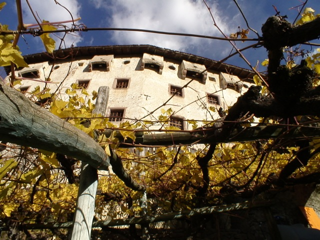 La vigna Katzenzungen e l'omonimo castello, a Prissiano, Bolzano