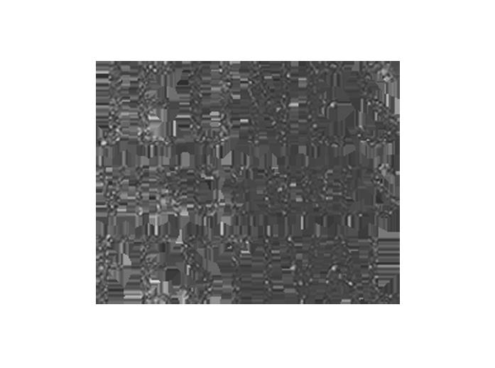Jeunes a Vincennes 3.png