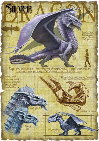 Silver Dragon Anatomy - art by Richard Sardinha