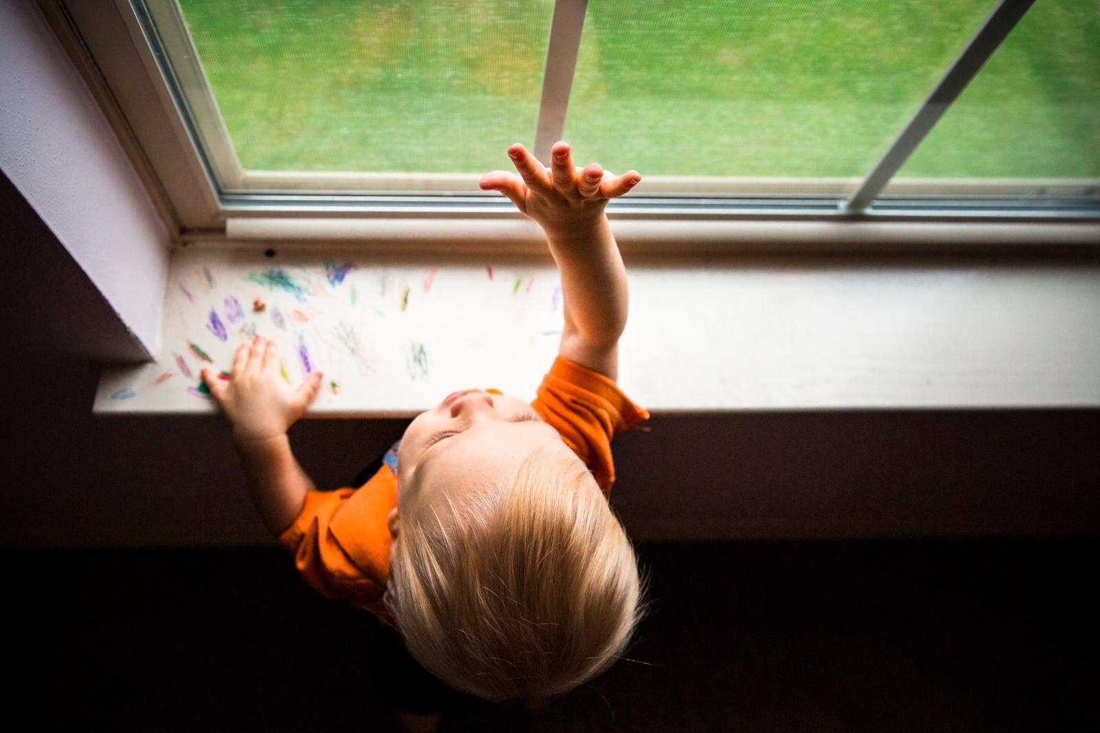 Toddler Window Capture