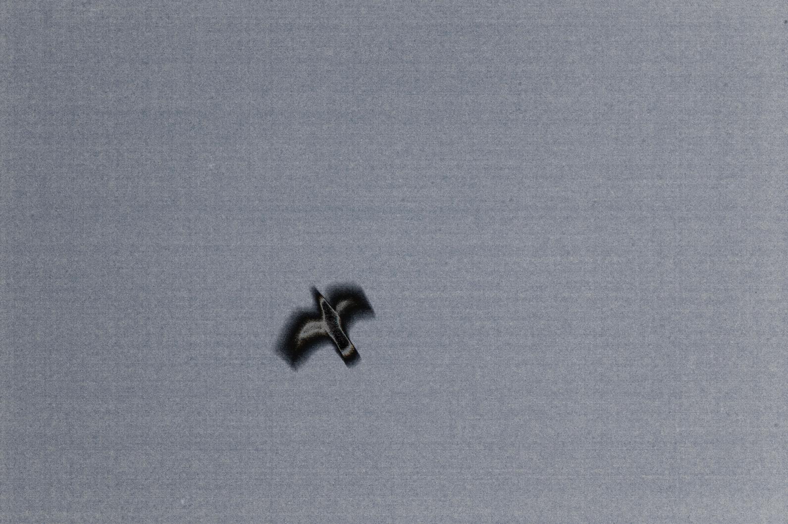 Screen Shot 2018-08-09 at 5.07.16 PM.png