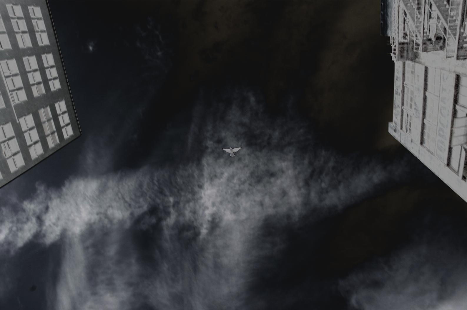 Screen Shot 2018-08-09 at 5.13.28 PM.png