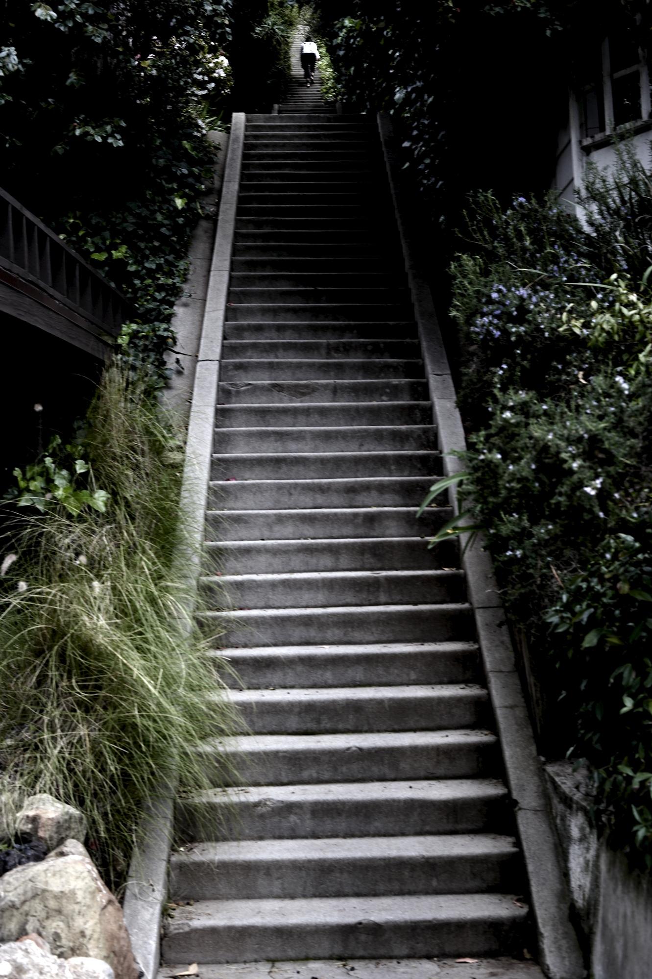 022310 la mag stairs286.jpg