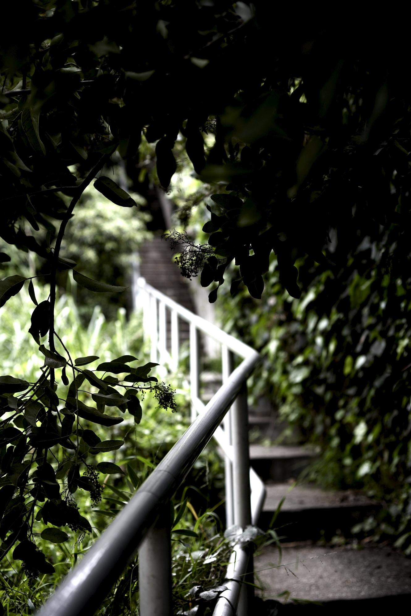 022310 la mag stairs345.jpg