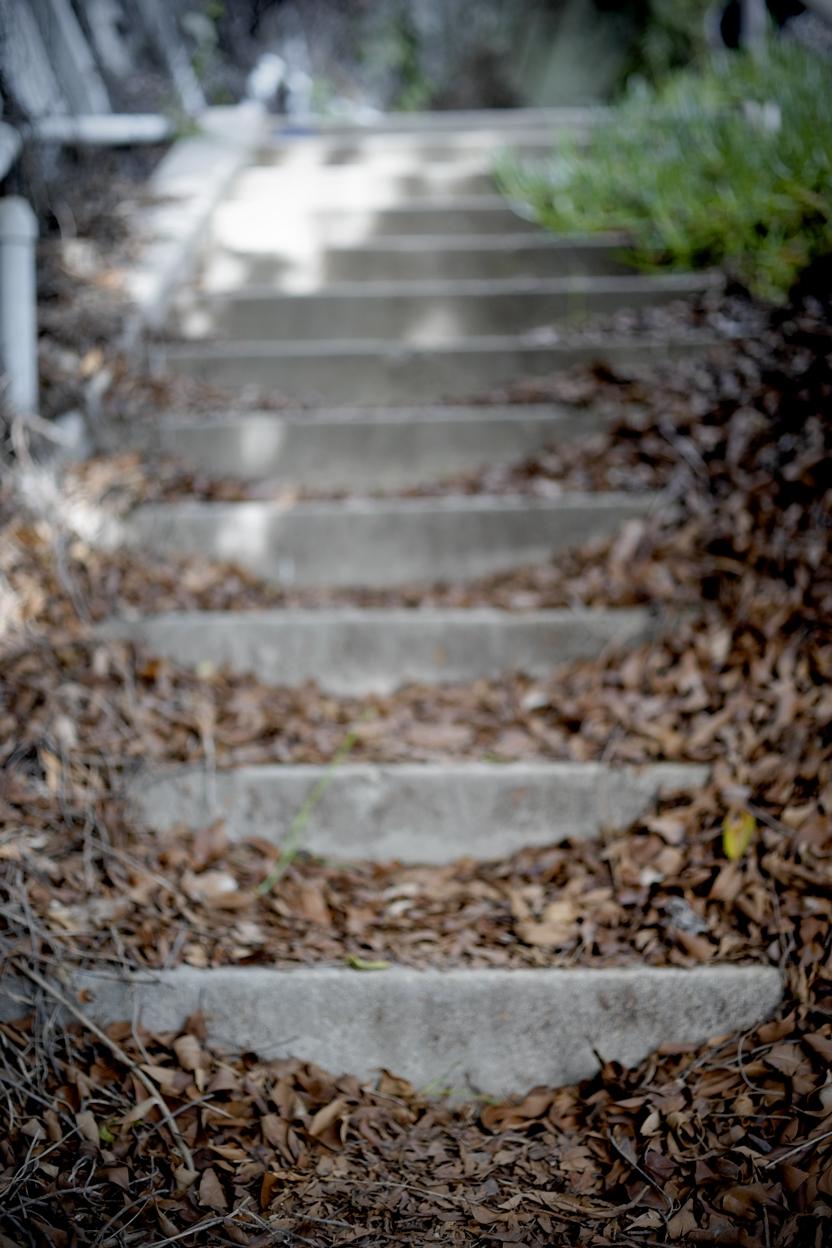 022310 la mag stairs373.jpg