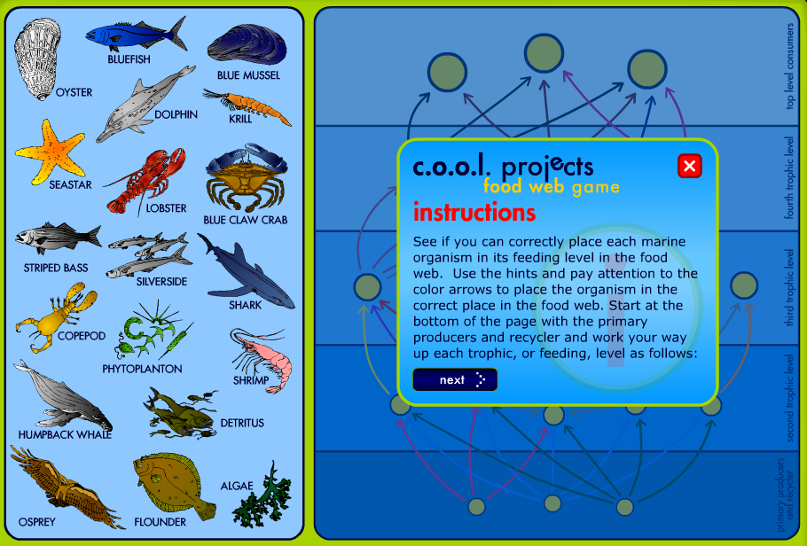 Ocean Food Web Game: Can You Correctly Place Each Marine Organism?