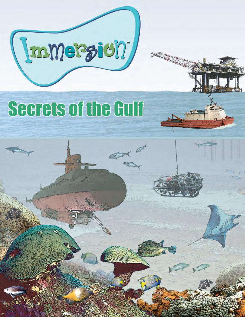 Secrets of the Gull