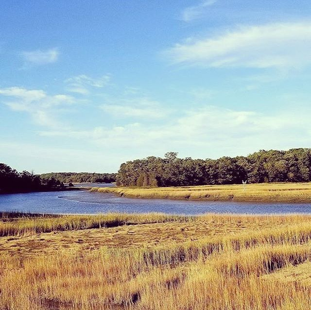 This is the Great Esker Park in Weymouth, MA. It's the highest esker in North America, home to species such as osprey and herring! The brackish river running through the esker is named the Back River. #iheartestuaries @raestuaries