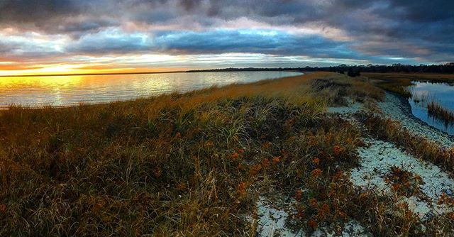 NAMEPA is showing extra love to marine environments today, like this estuary! How can you show marine environments some love today? #saveourseas #iheartestuaries