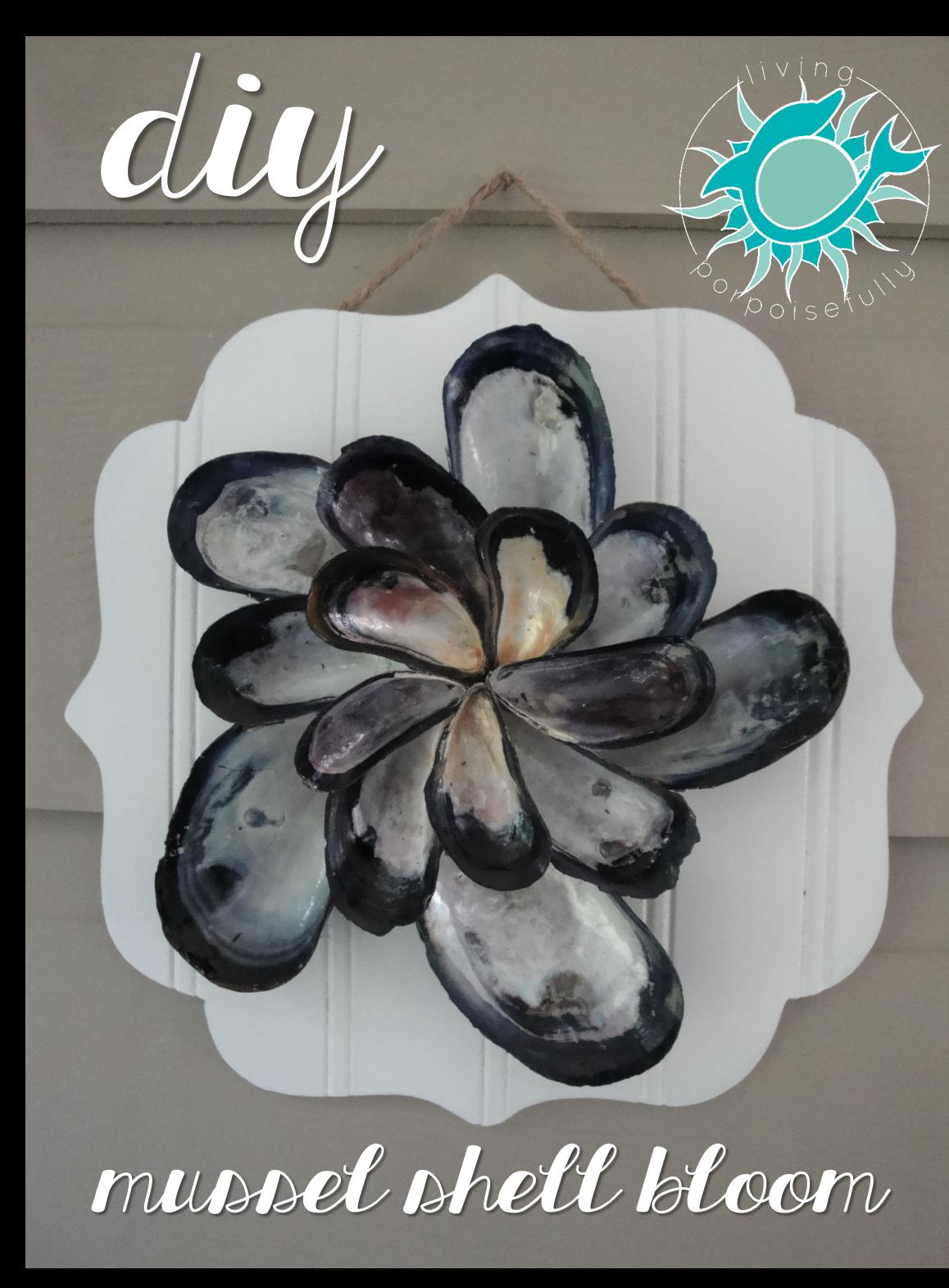 Mussel Bloom