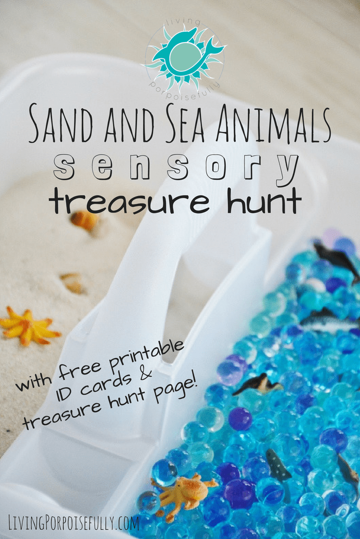 Sea and Sea Animals Sensory Treasure Hunt