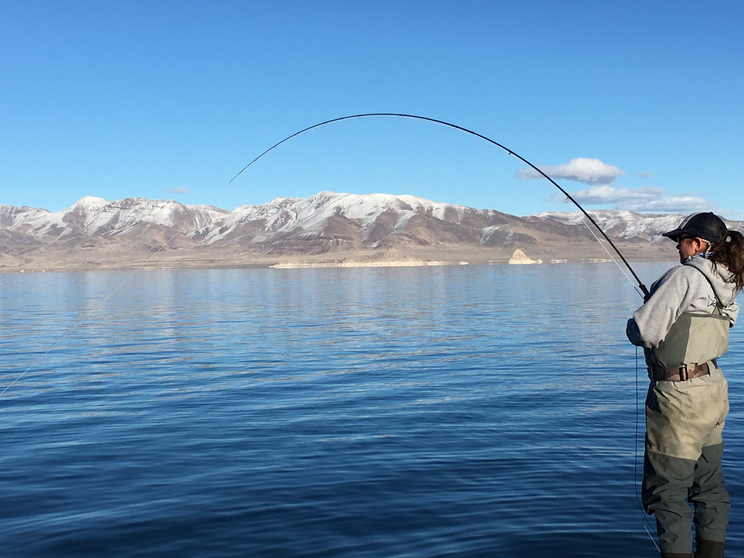 """Welcome to Pyramid Lake Kelly McFLY from WY. Nice bend on that 11'6"""" 7wt Switch Rod. Photo: Capt Rob"""