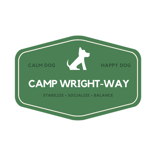 CampWWR.png