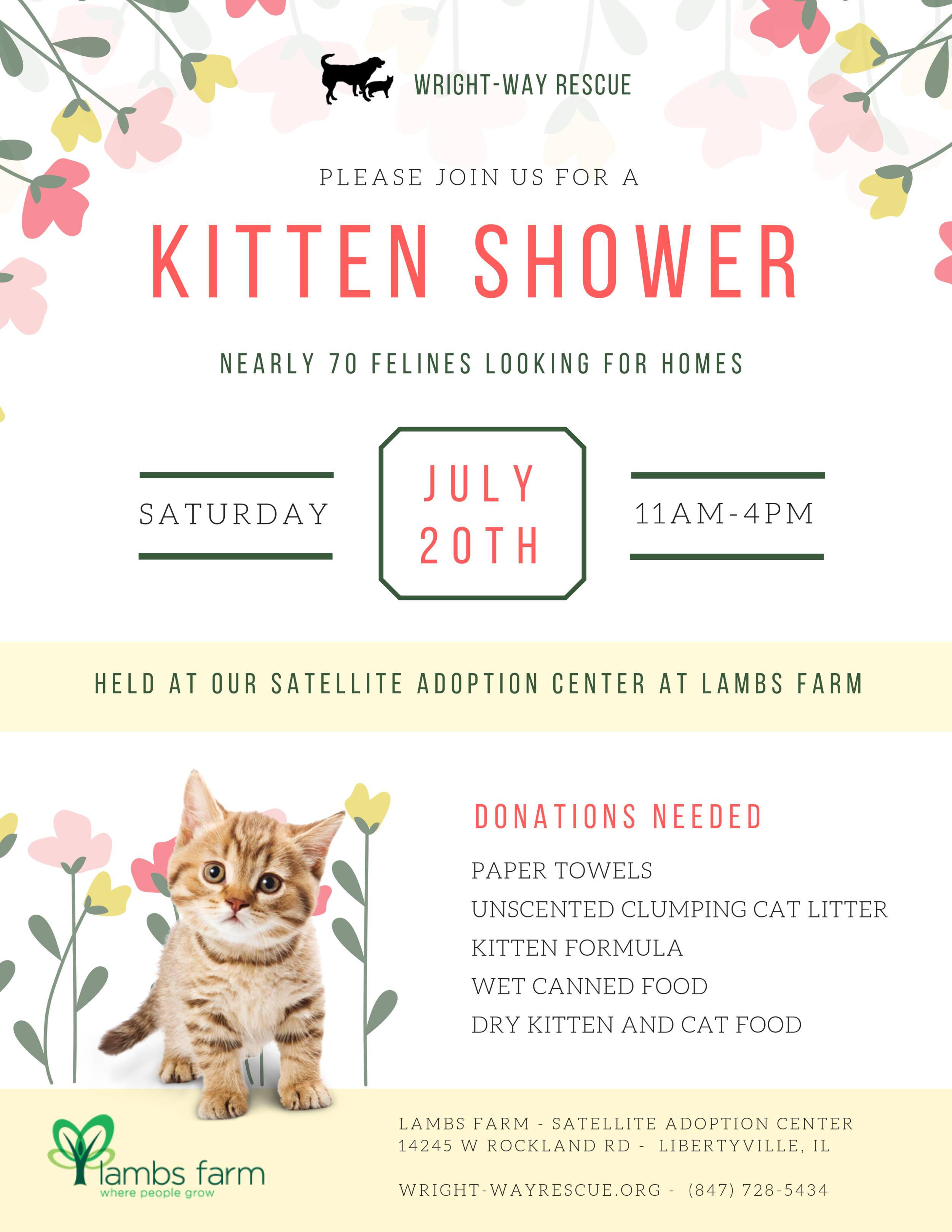 Kitten Shower - Lambs Farm.png