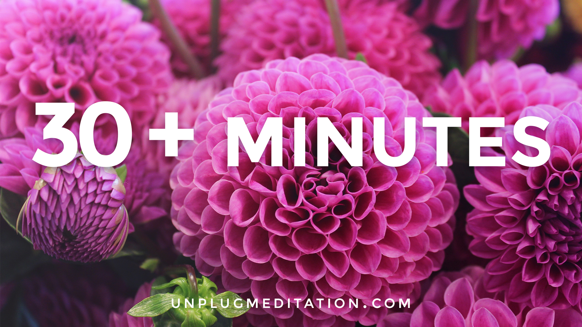 Unplug-Meditation-VHX-Covers-Artwork_30+-MINUTES.jpg