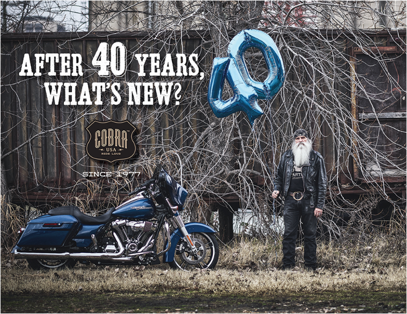 Promotional Design and Advertising - Cobra USA -Anniversary Mailer - Silver