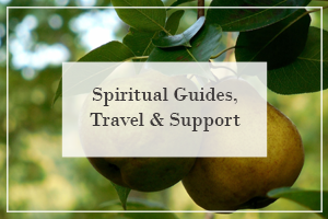 Spiritual Guides, Travel - Support.png