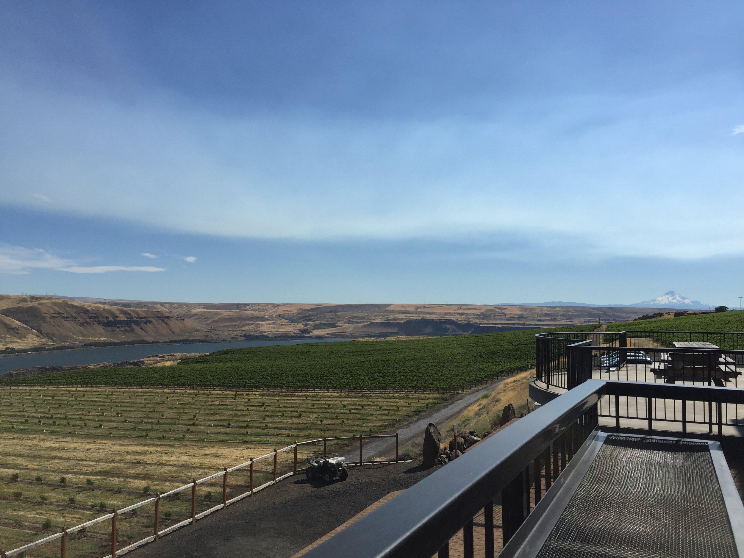 The spectacular views at Maryhill Winery