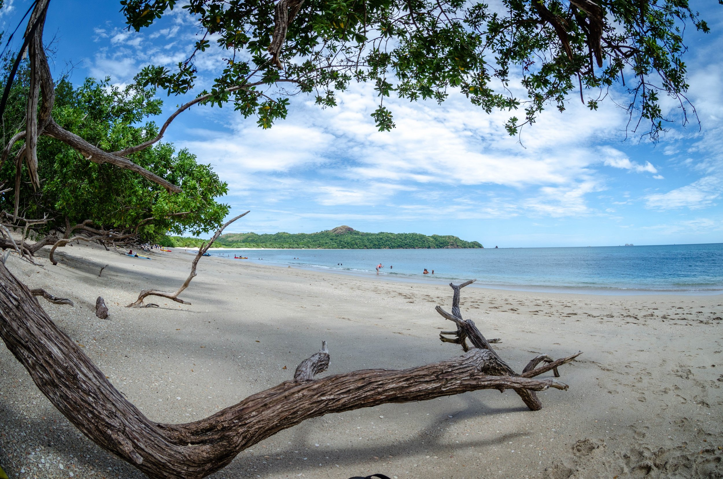 Costa Rican Eco Treasures