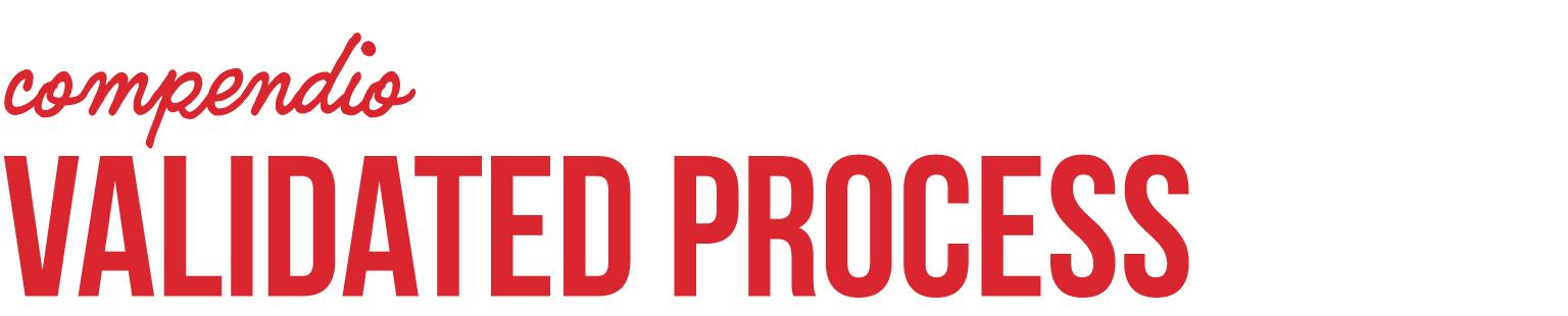 _0002_compendio Validated process.jpg