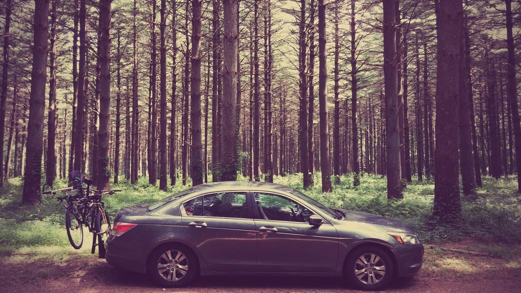 car-pic-3.jpg