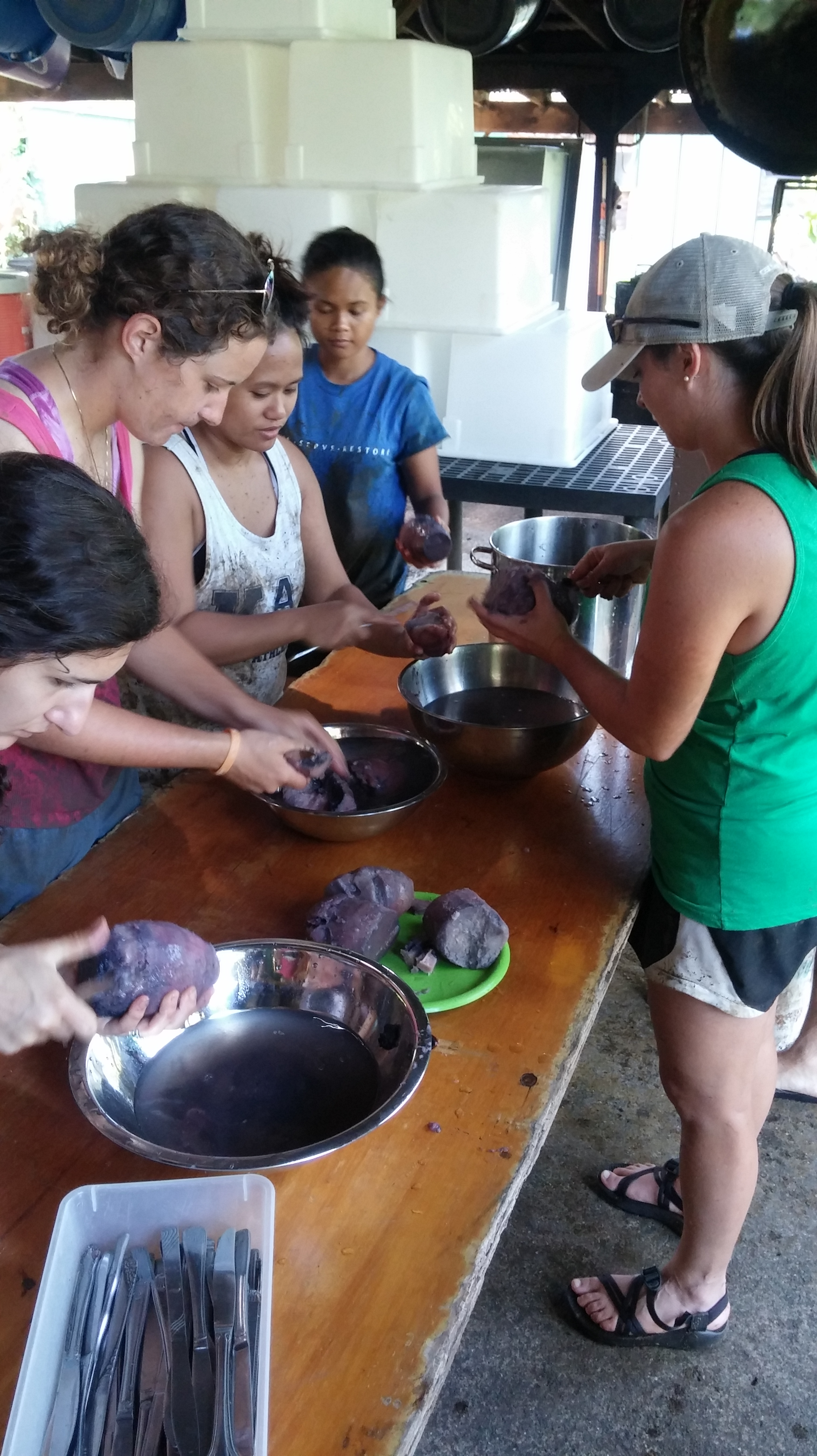 Learning how to cook the kalo. Just like prepping mashed potatoes.