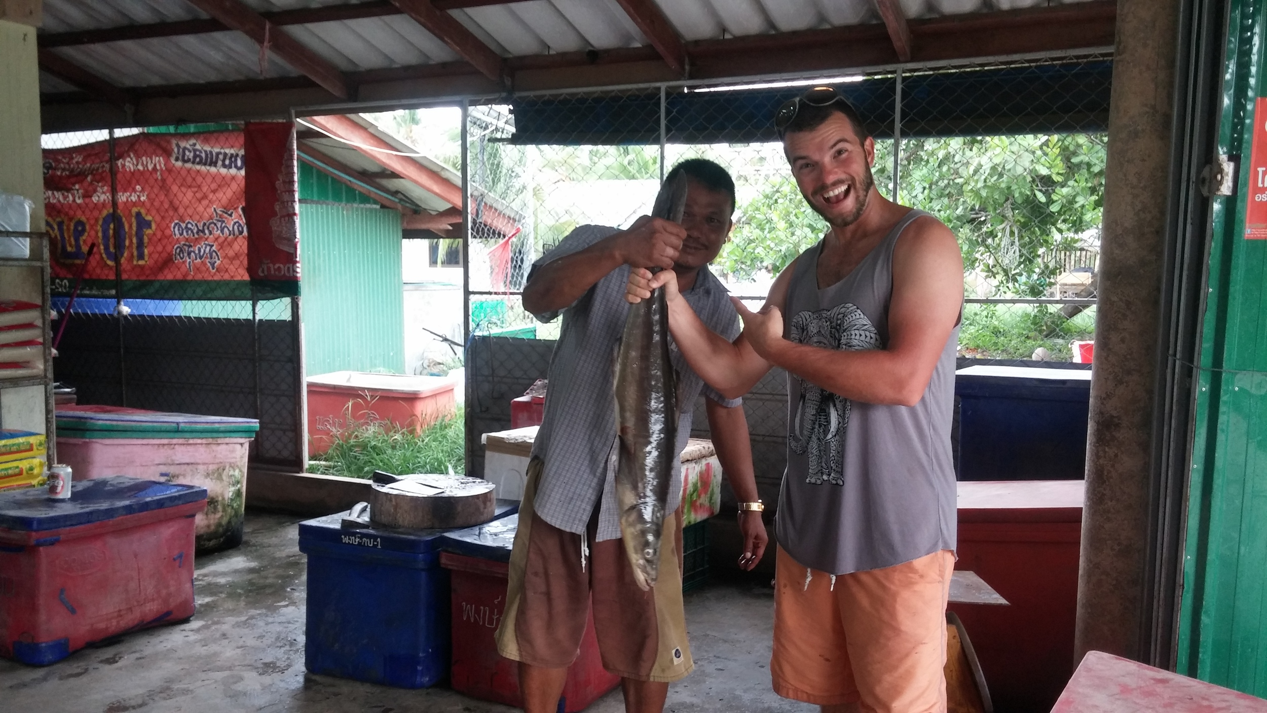 This man had to use a hammer against his butcher knife to cut through this monster fish!