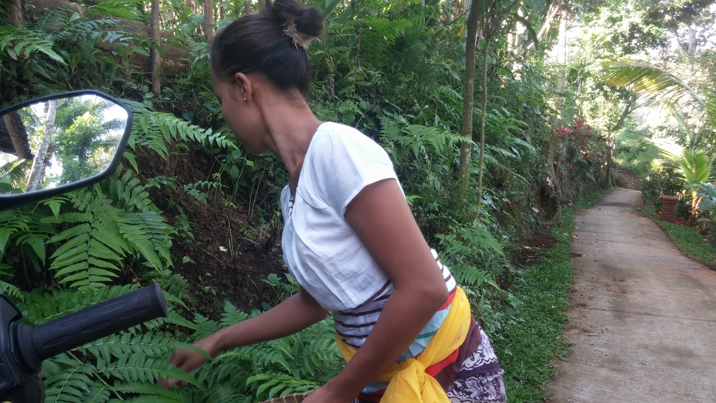 We were still gathering ingredients along their hillside on our walk to see the rice terraces.