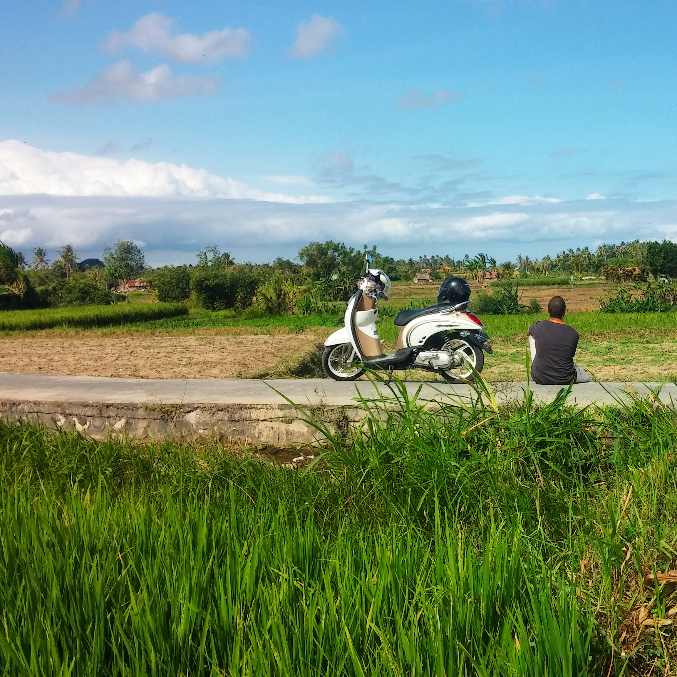 We were so frustrated with being lost in the endless maze of rice paddies! The farmers were even giving us funny looks. We finally gave up, hopped off the bike and stormed off in opposite directions.