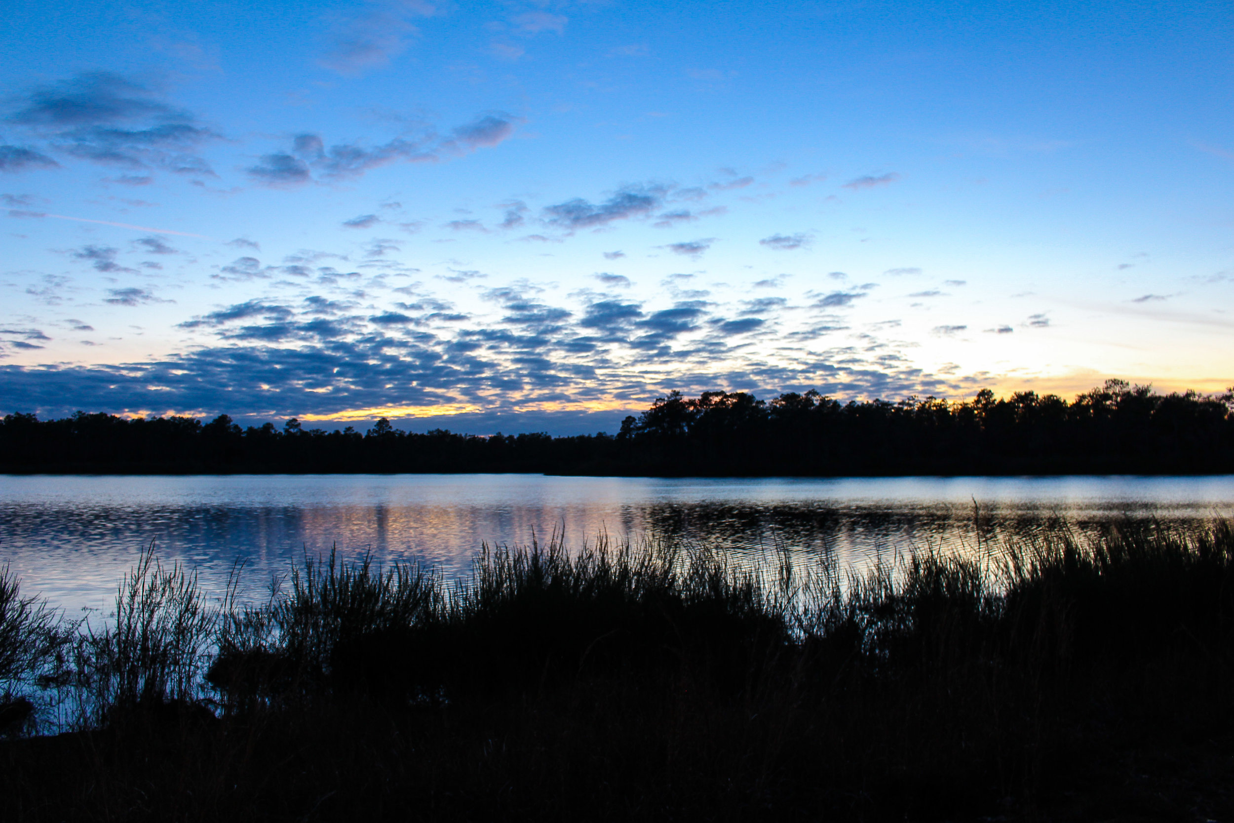 Dusk at Camel Lake Campground in Apalachicola National Forest, FL