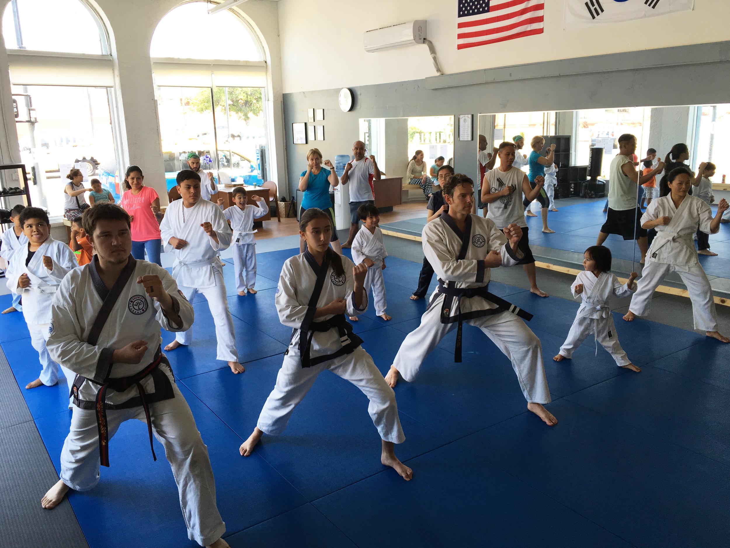 Family karate class!