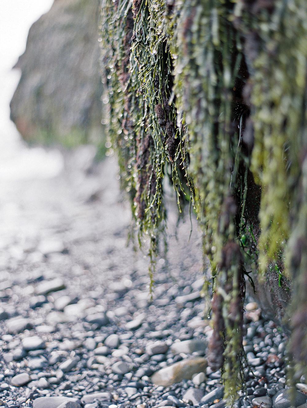Maine_052.jpg