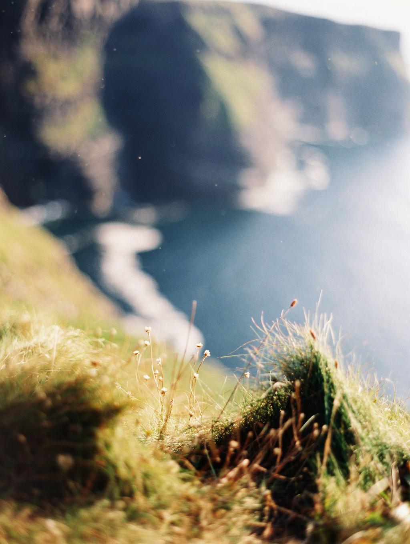 Ireland_487.jpg