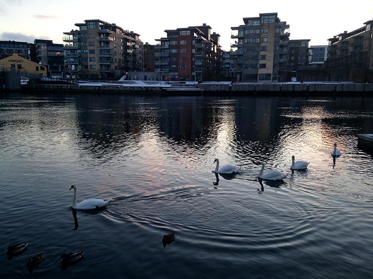 Norway_017.jpg