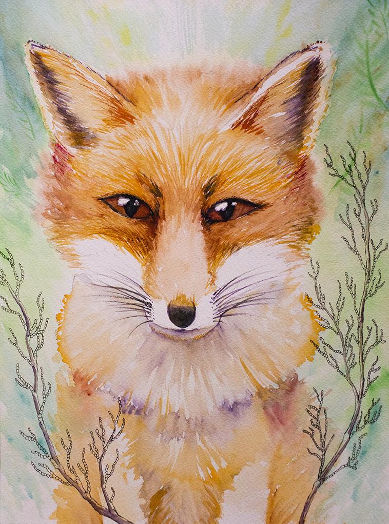 Fox sm.jpg