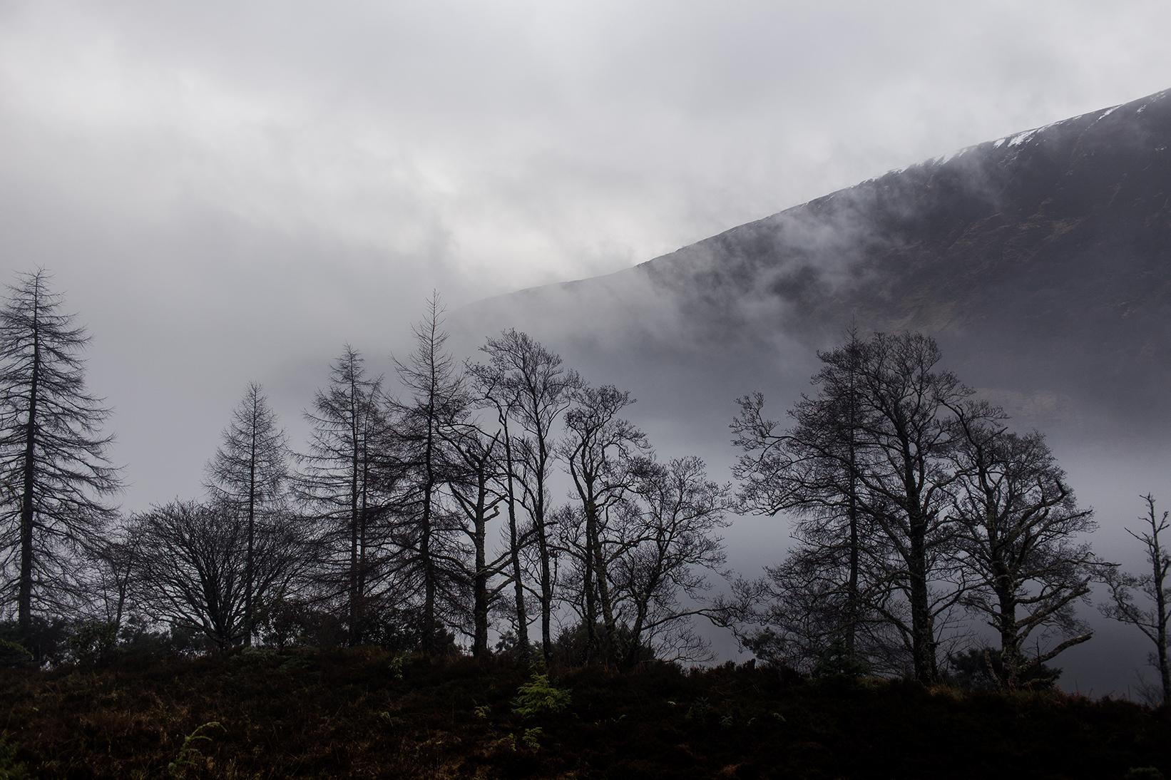 Scotland 2018_0804.jpg