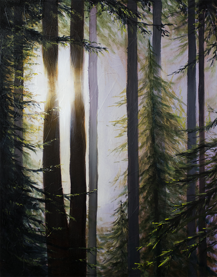 Forest Light 32, Oil on board. 2018 Sarah Burns.
