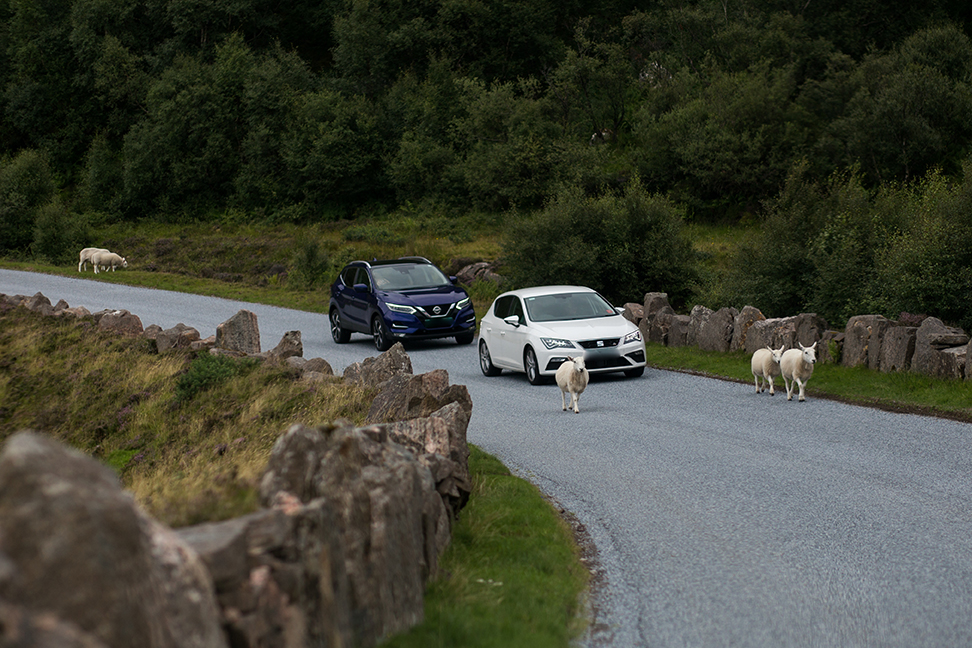 Scottish road block.
