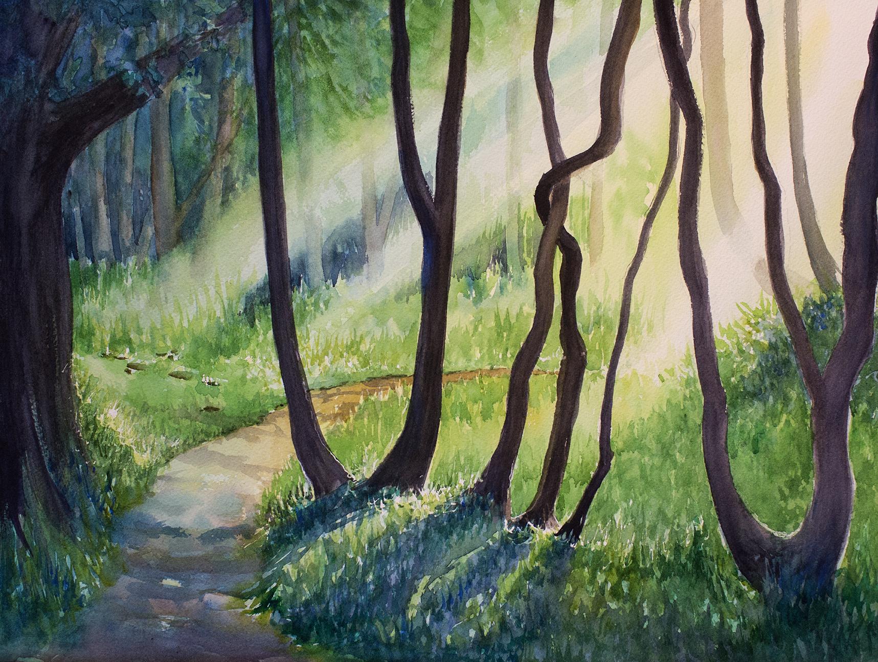 Forest Light 30 sm.jpg
