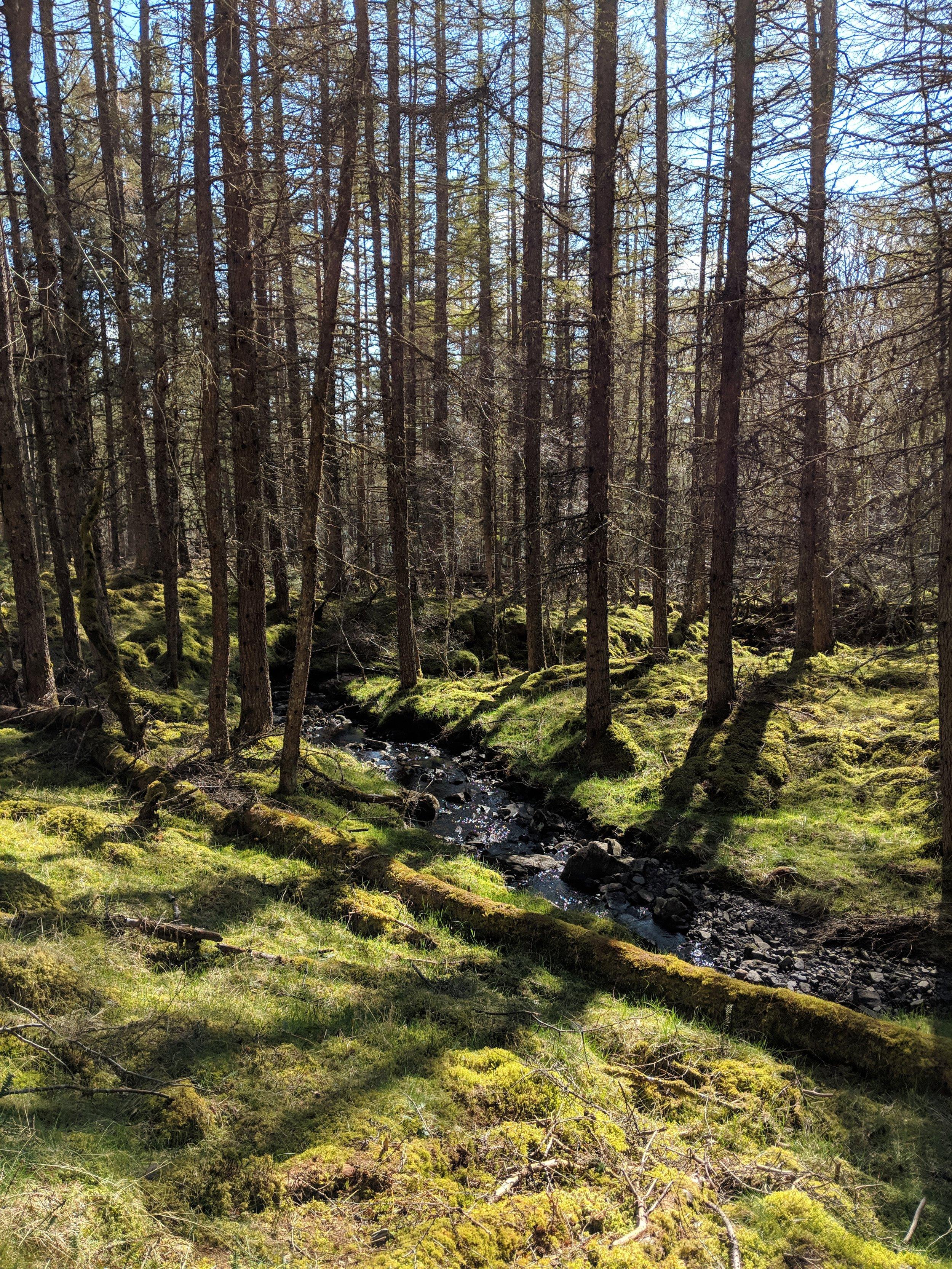 Achness Falls 4.jpg