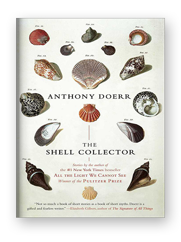 shell_collector_blog_cover.png