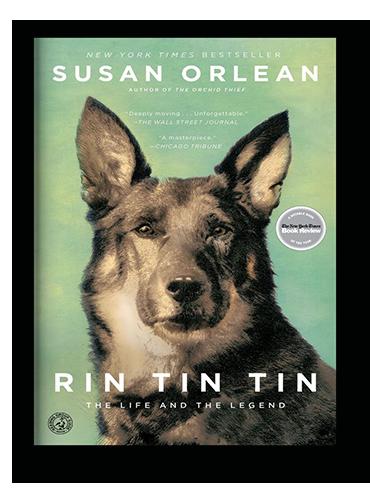 Rin Tin Tin on Scribd