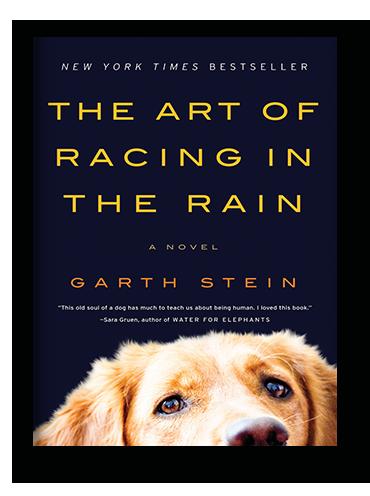 The Art of Racing in the Rain on Scribd
