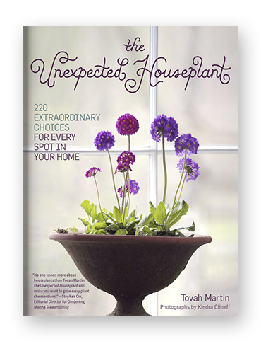 The Unexpected Houseplant on Scribd