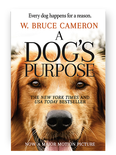 a-dogs-purpose.jpg