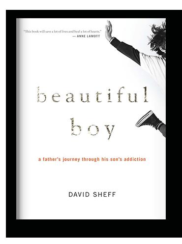 Beautiful Boy by David Sheff on Scribd.png