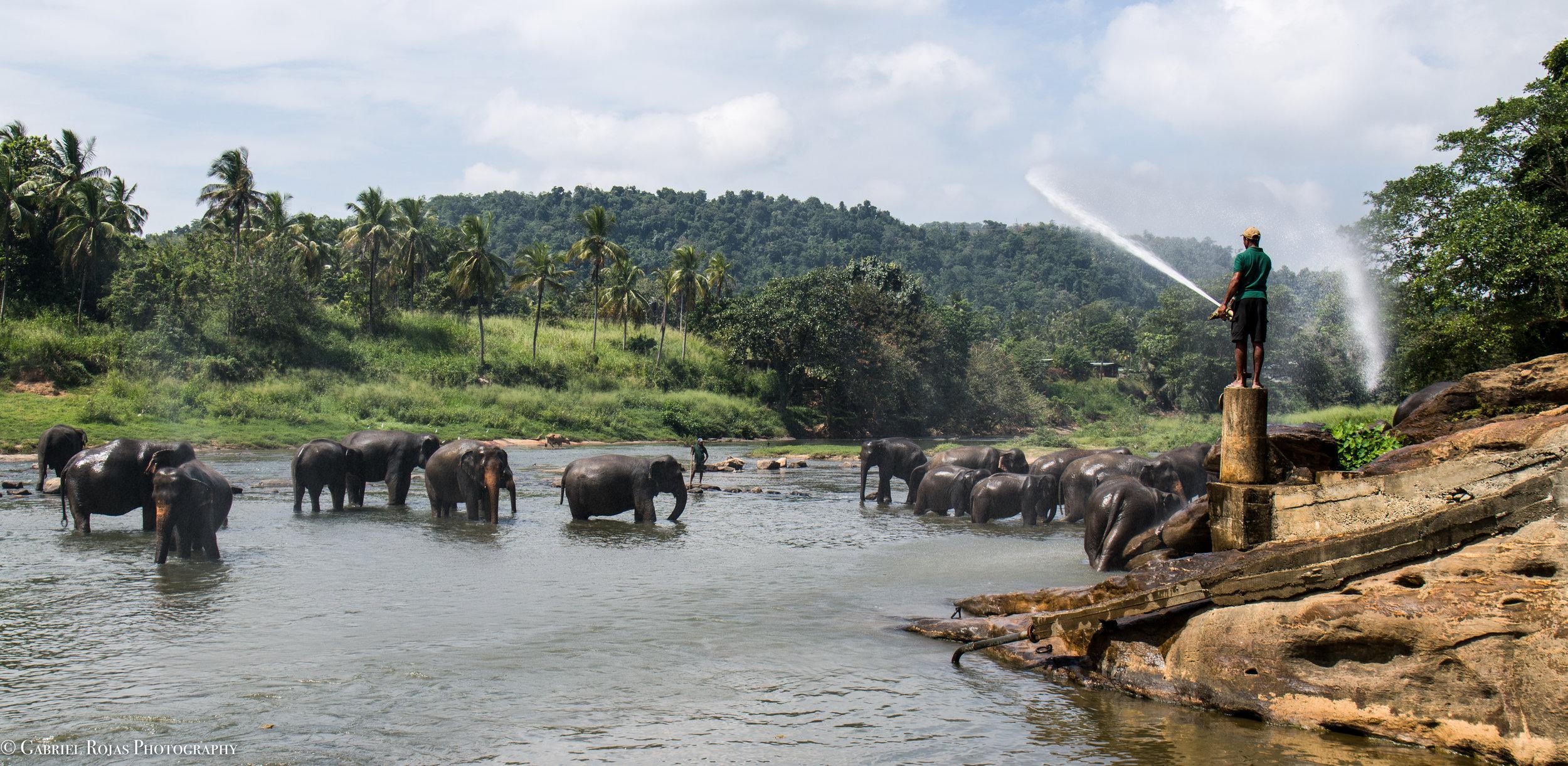 Sri Lanka 2019-6.jpg