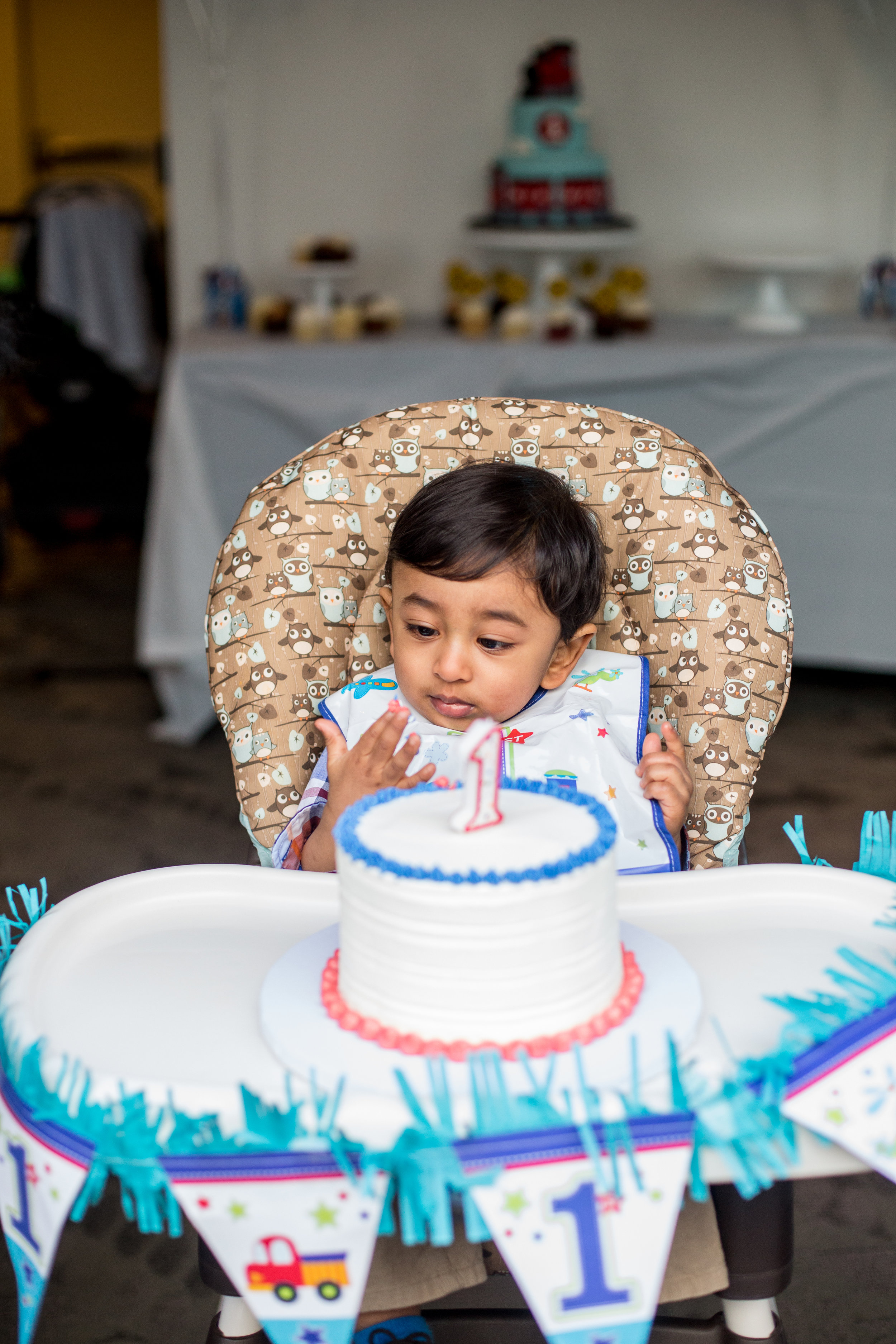 little boy with smash cake at first birthday party photo