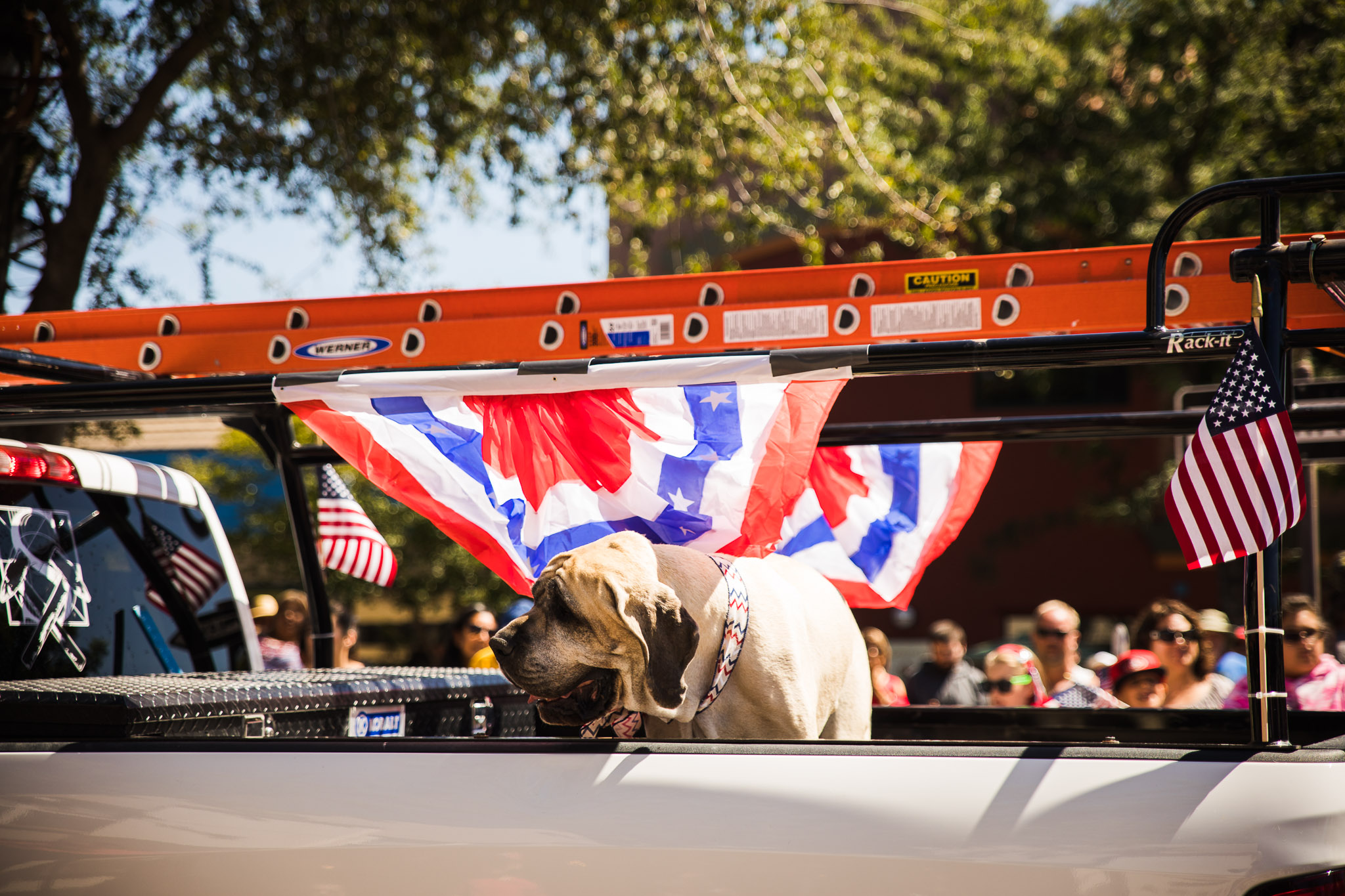 Archer_Inspired_Photography_Morgan_Hill_California_4th_of_july_parade-120.jpg